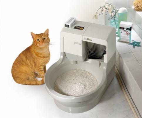 Туалет для кошек видео