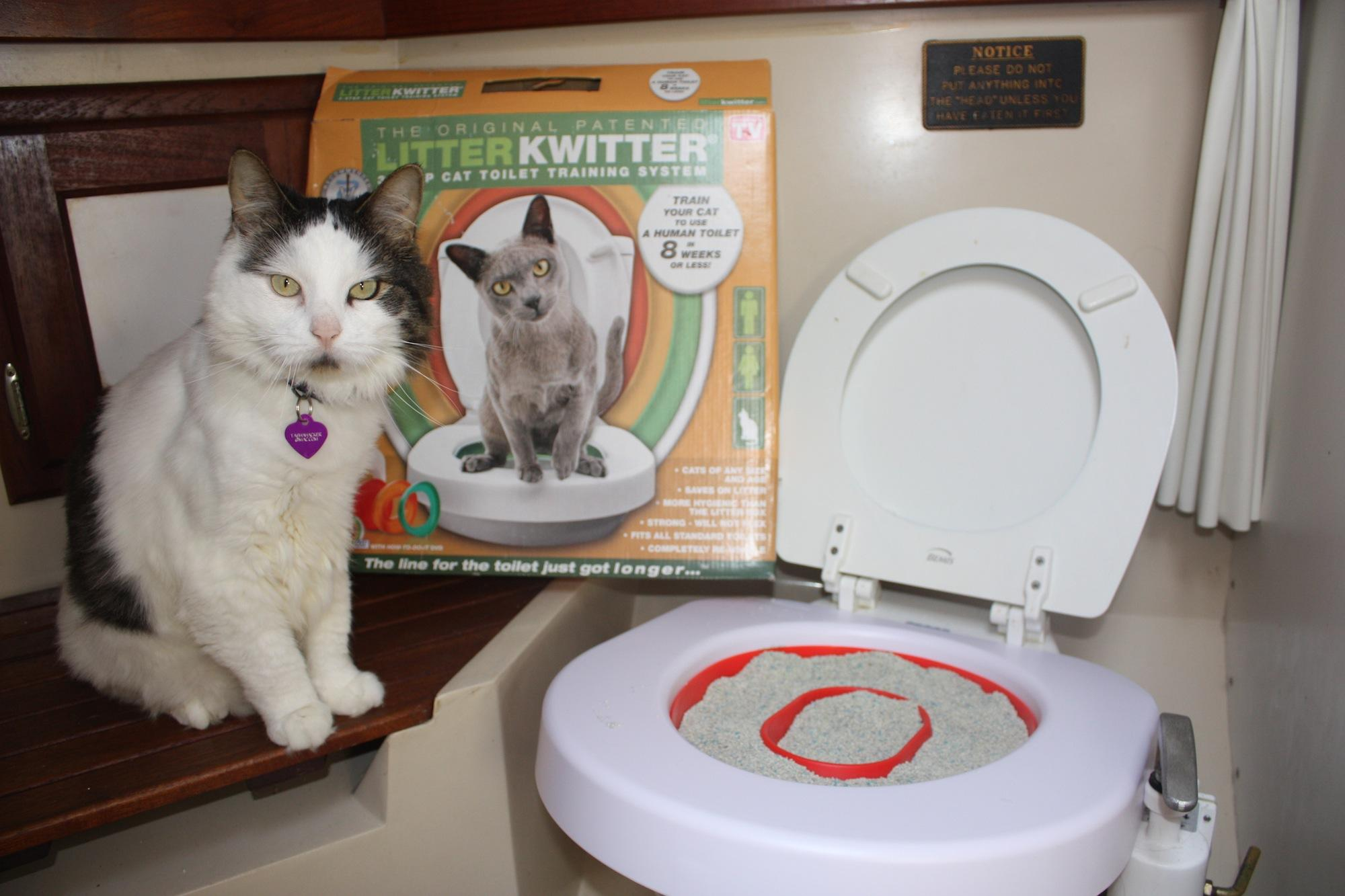 Купить собственный унитаз cat genie $250-$350 ссср сантехника