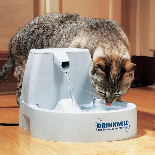 Автопоилки для кошек