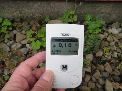 Дозиметр Радэкс 1503+ в режиме наблюдения